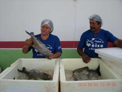 porto_acre_feira_017