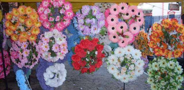flores_p_materia