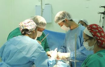 transplantes-mutirão-346x220.jpg