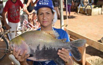 feira-do-peixe-sena1-346x220.jpg