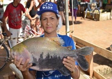 Feira do Peixe começa em Sena