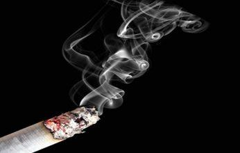 smoke-346x220.jpg