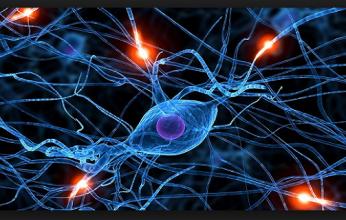 esclerose-346x220.png