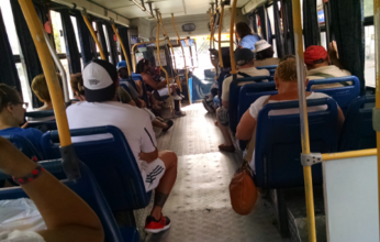 bus-346x220.png