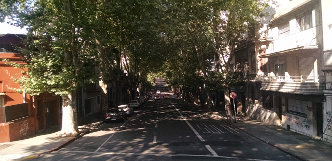 ruas montevideo arborizadas