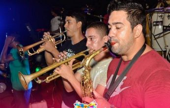 carnaval-sena-musicos-346x220.jpg