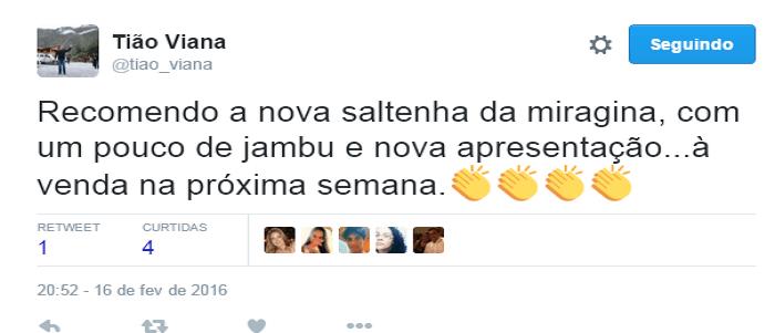saltenha