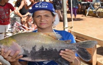 feira-do-peixe-sena-346x220.png