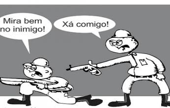 fogo-amigo-346x220.png