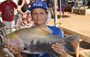 mercado-do-peixe-em-sena-346x220.png