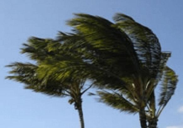 vento pv
