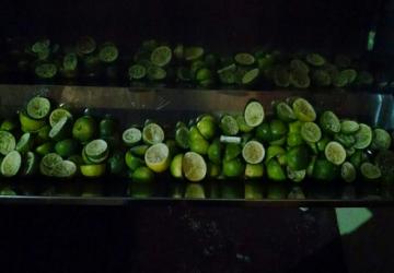 limão-capa-360x250.png