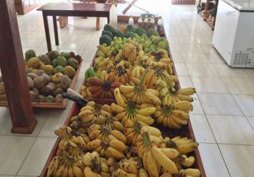 banana-acre-360x250.png