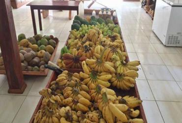 banana-acre-370x250.png