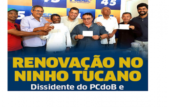 dissidente-capa-346x220.png