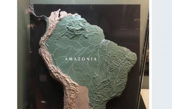 amazonia-346x220.png