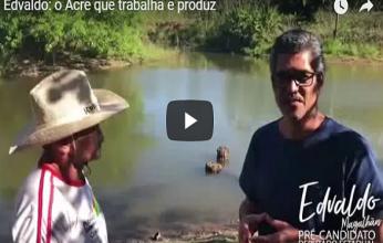 edvaldo-video-peixe-produtor-346x220.png