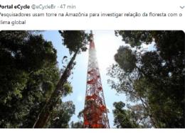 floresta-260x188.png