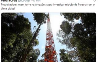 floresta-346x220.png