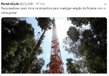 floresta-360x250.png