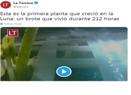 planta-na-lua-260x188.png