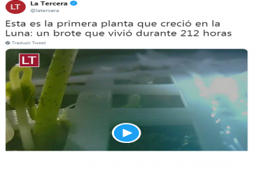 planta-na-lua-370x251.png