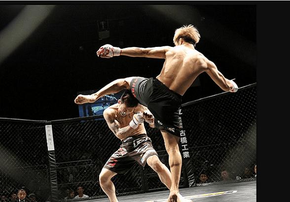Novos atletas surgem para acirrar competição no UFC (by Pixabay/License)