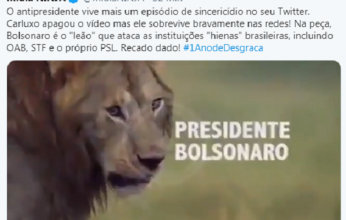 leao-346x220.png