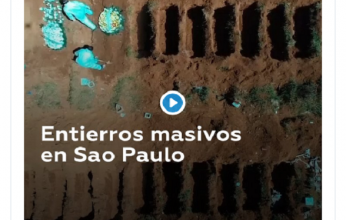 sao-paulo-capa-346x220.png