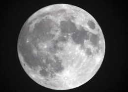 lua-260x188.png
