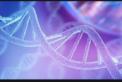 genoma-humano-122x82.png