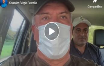 petecao-video-1-346x220.png