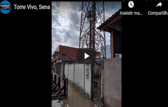 vivo-sena-capa-346x220.png