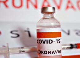 coronavac-260x188.png