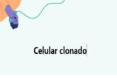 celular clonado