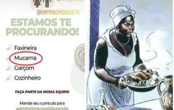 mucama-346x220.png